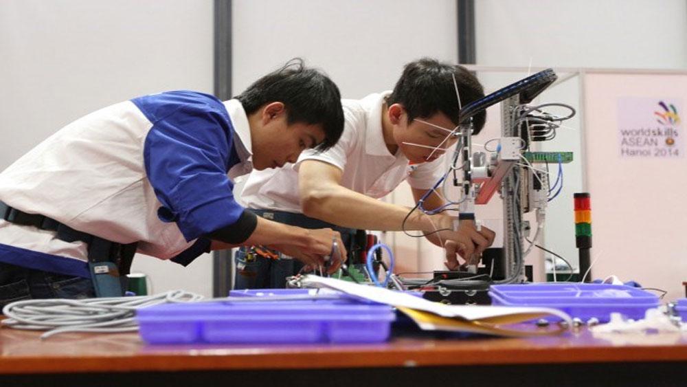 13 thí sinh, Việt Nam, dự thi 12 nghề, Kỳ thi tay nghề thế giới lần thứ 44